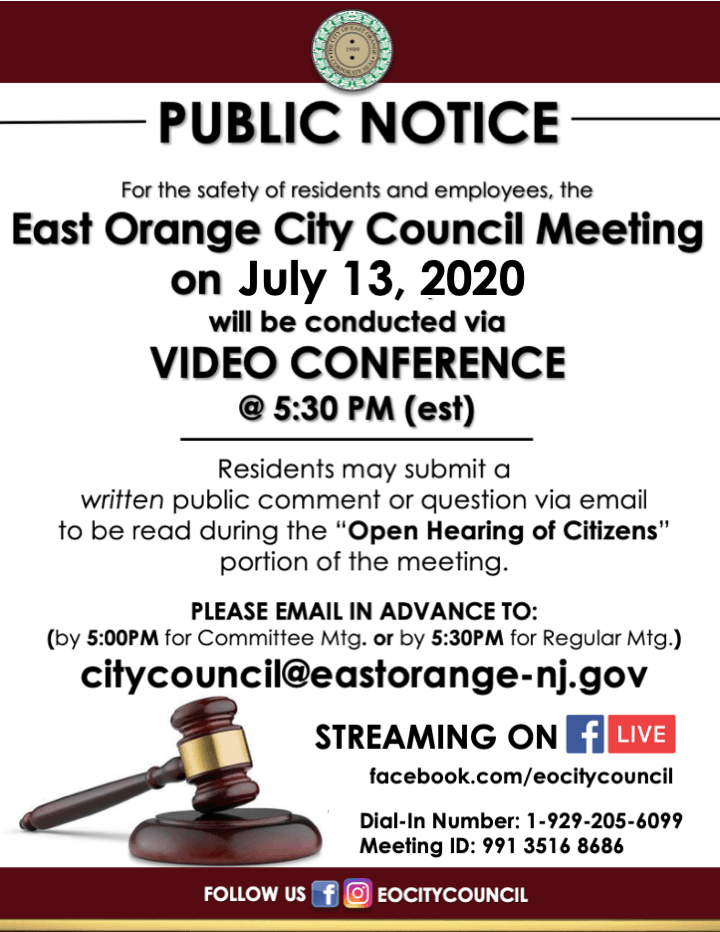 virtual council meeting- 7.13.pdf
